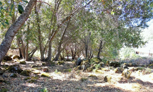 Flat, buildable lot in a quiet neighborhood of nice homes, this property is located in a serene and peaceful area.
