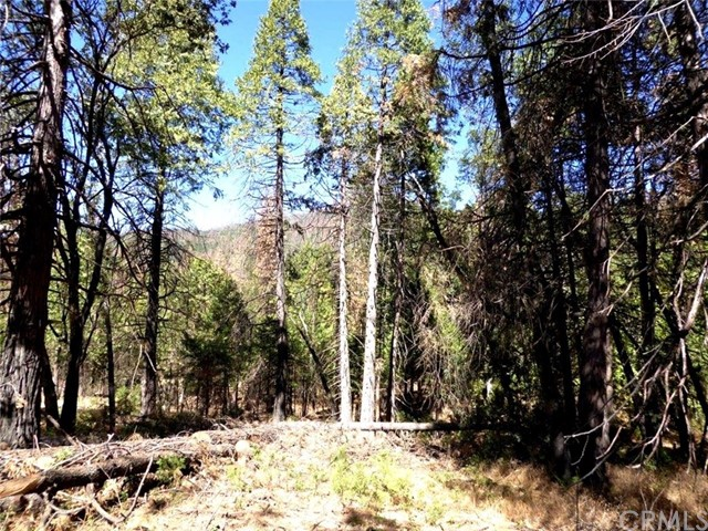 Beautiful buildable lot in Cascadel Woods.  Mountain views and lots of trees!  Great building site at 3800 ft. elevation!  Close to lots of recreation!  Water and paved road.