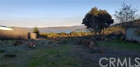 Great price on this beautiful ready to build lot. Most level lot with nice lakeview . Best of all no homes are on the 62+/- ACRE LOT that is behind this lot.