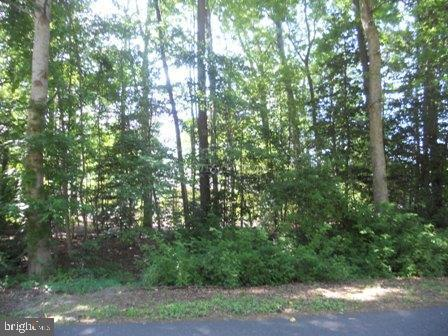 Huge price change! Wooded waterfront on corner lot in Bay Colony Section of Ocean Pines.  Recent survey on file. Ready to build your dream home on now.