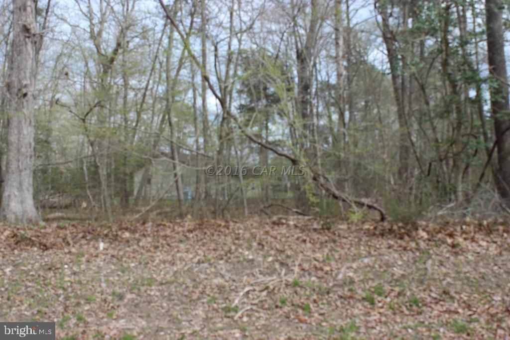 "5/82 Wooded lot with water availability, close to golf course and just off the main corridor.   Buy now and build later, take advantage of this great buy! Builders ""Priceline Models"" start under $125K, call for more information.  No time frame to build, just enjoy all the amenities and the lifestyle on the Eastern Shore of VA.  Captains Cove is the Eastern Shore of Virginias fastest growing Golf & Waterfront community; close to Chincoteague Island, Wallops Island and Ocean City MD.  HOA dues include FREE golf, indoor/outdoor pools (2), fitness center, basketball & tennis courts, boat ramp, docks, playground, security and so much more."