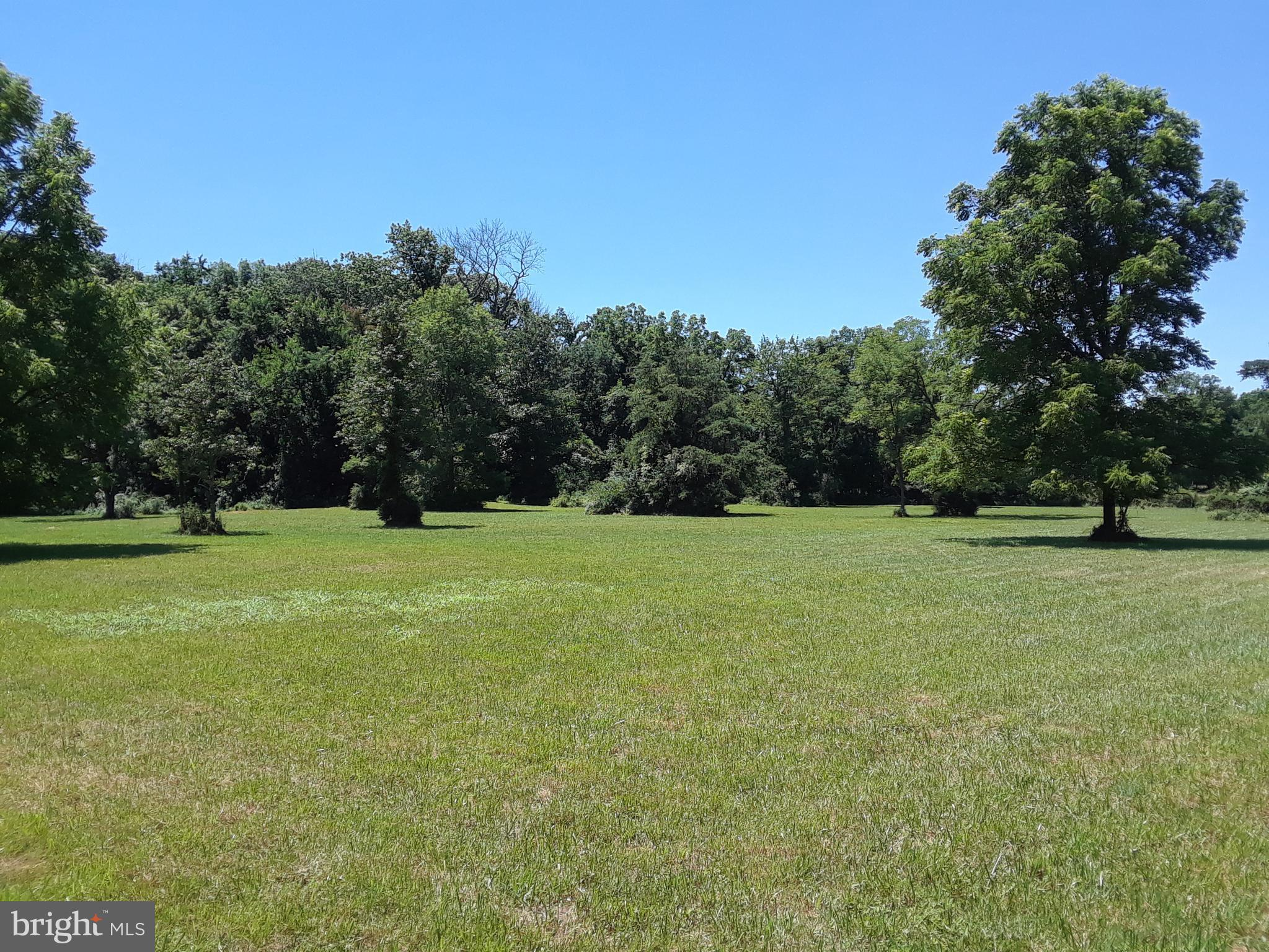 10 BEAUTIFUL ACRES WITH MATURE TREES,. BRING YOUR HORSES! WELL INSTALLED!  APPROX  6 ACRES OPEN AND