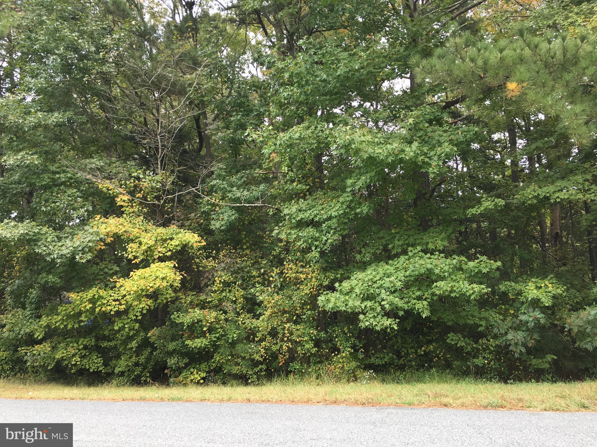 Build your beautiful home on this A great wooded corner lot lowest price on the market this lot won't last long ,