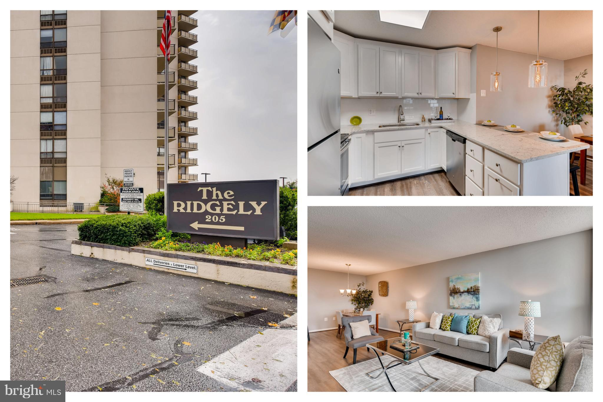 Completely renovated unit now available at The Ridgely Condominium complex in Towson!  Open layout.