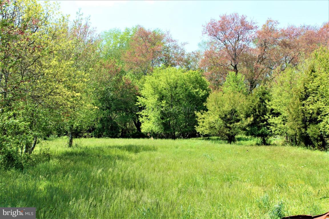 Great opportunity to build your dream home. Nice setting in Bishopville & minutes to the beaches. Mini-subdivision. Forest Conservation easement recorded in Md. land records. Mobile home restricted in deed.