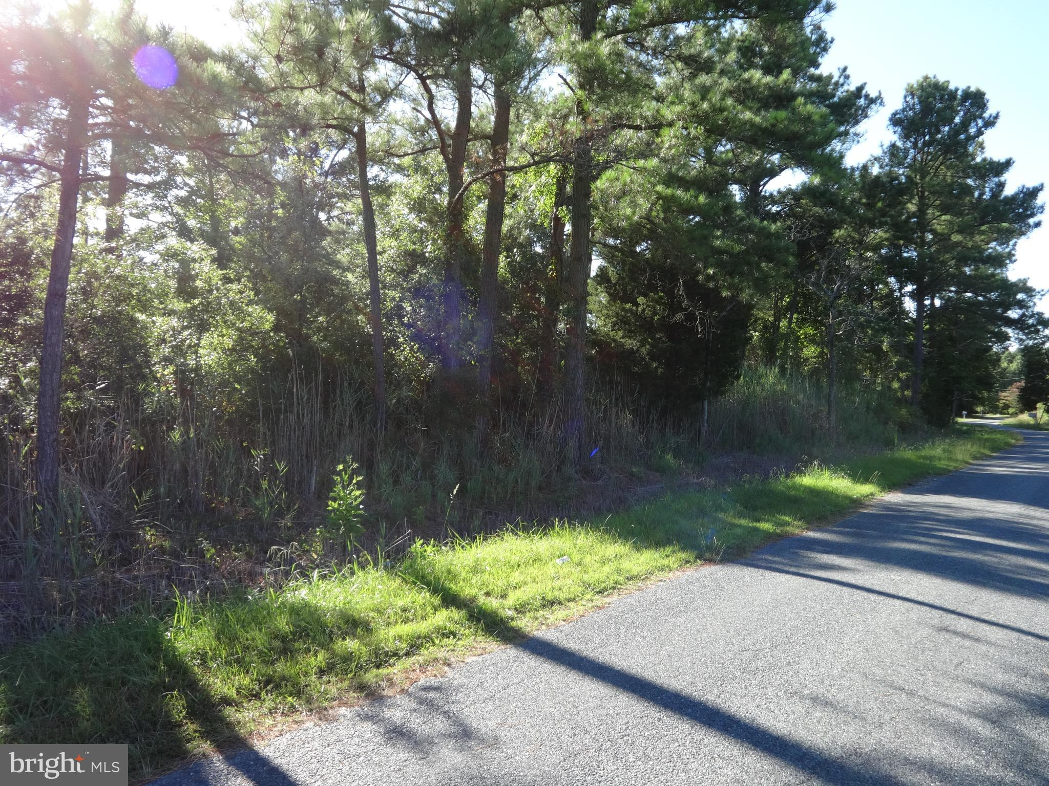 Seller Financing Available! 0.75 acre lot in the Lower Hill area.