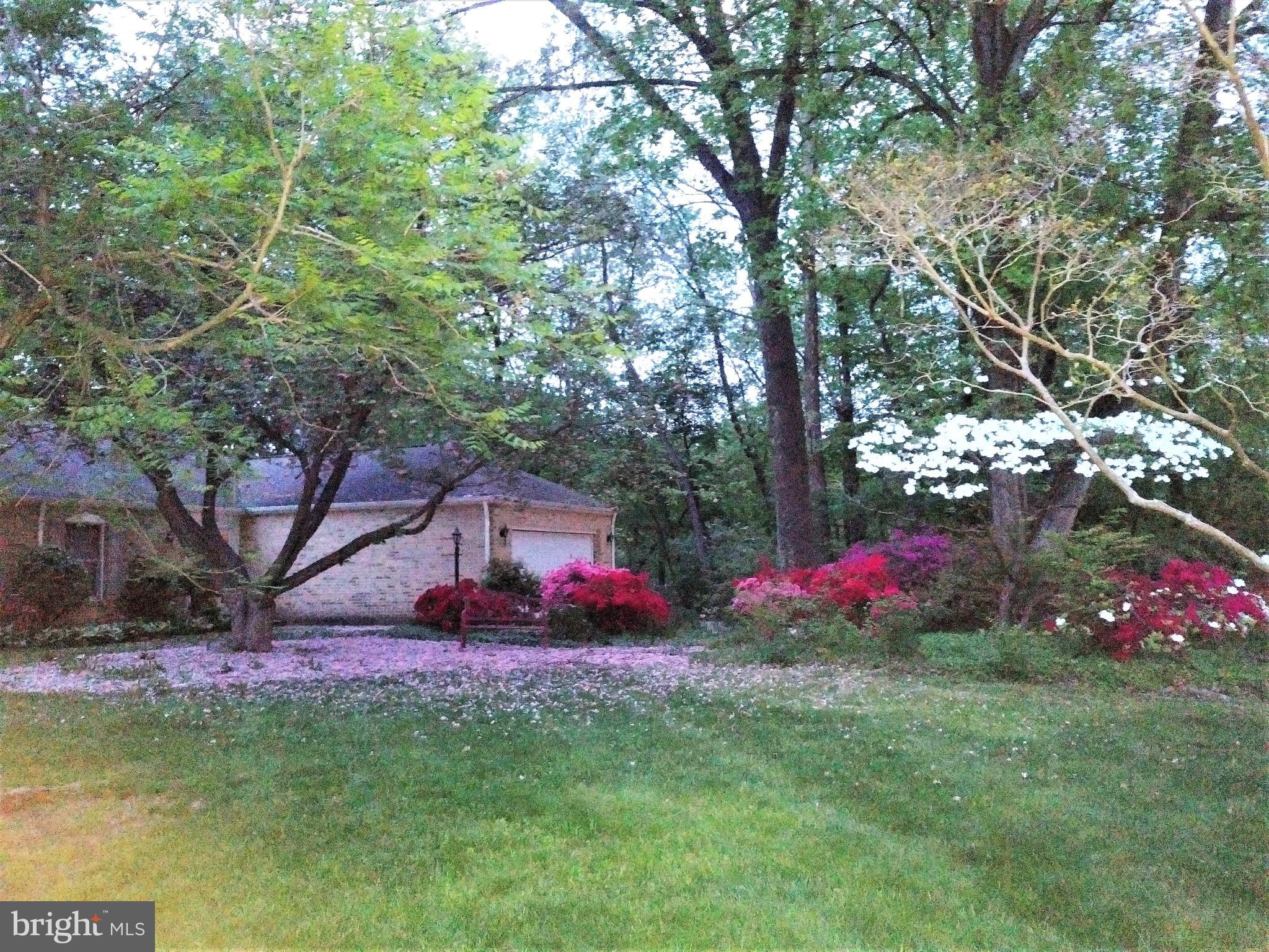 Great Meadow in THE MEADOWS! This Rancher boasts updates in the entire lower level and wonderful spa