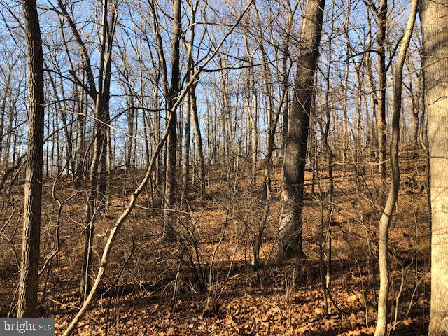 This is a 100% wooded remainder parcel from a minor subdivision project started in 1992. The subdivision process was never completed so currently THIS IS NOT AN APPROVED BUILDING LOT.  Zoning is RC-5.  Listing agent can provide background information and documentation from original subdivision process.   SELLER IS NOT WILLING TO CONTINUE THE PROCESS AND THE LOT IS NOT CURRENTLY BUILDABLE.   ANY POTENTIAL BUYER WILL NEED TO HAVE CASH OR CASH EQUIVALENT AND THE ABILITY TO COMPLETE ALL REQUIRED PROCESSES TO OBTAIN A BUILDING PERMIT OR TO SUBDIVIDE FURTHER, AT BUYER'S OWN EXPENSE AND RISK.