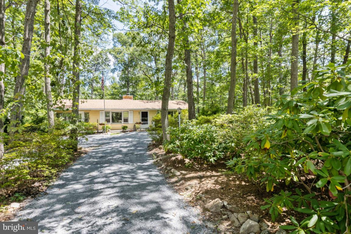 A lovely home on a private, wooded 1/2 acre lot with lots of mature trees & more! The property offer