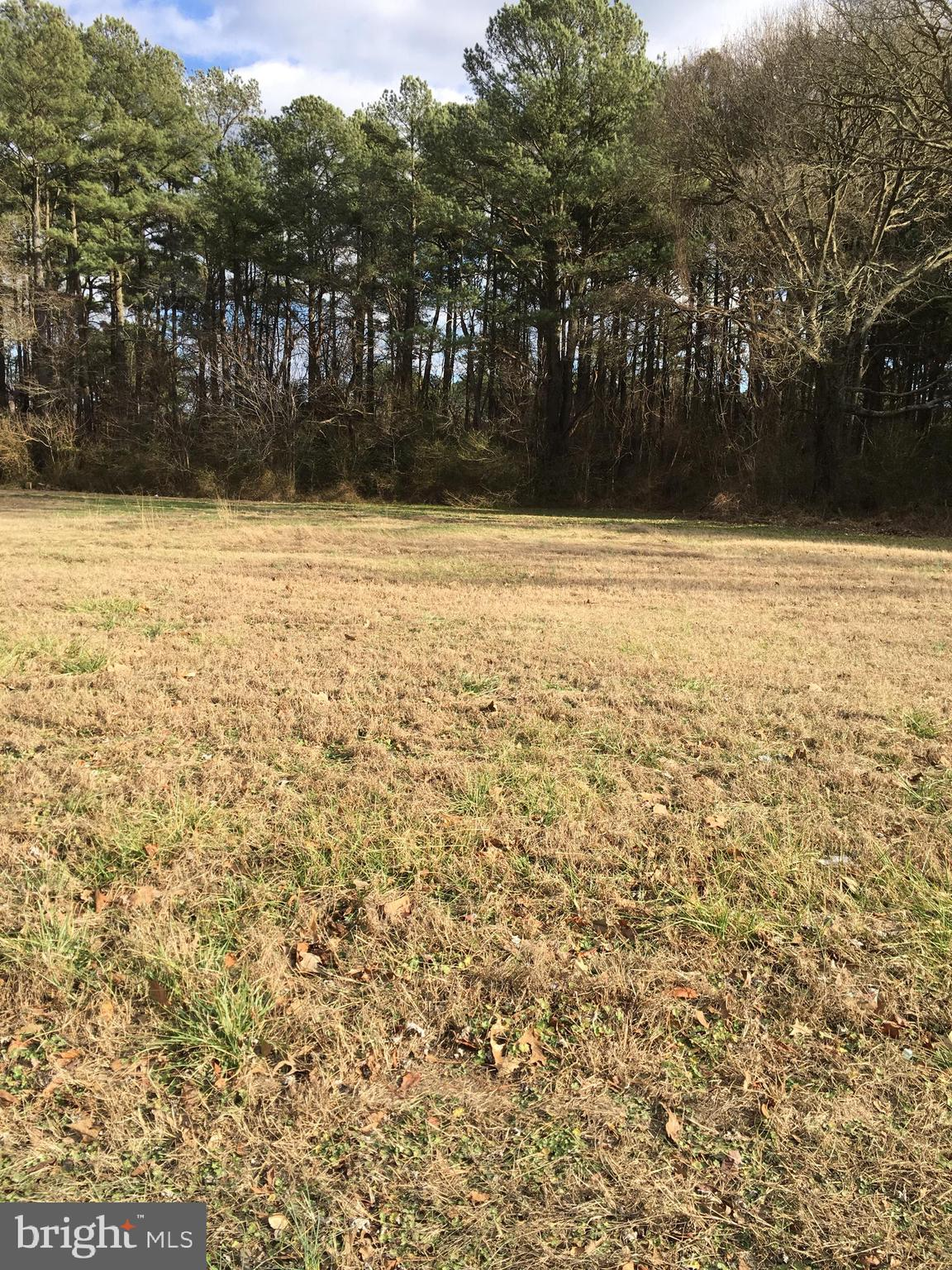 Sales price include   3 lots 2113, 2115, 2117  Northwood  Dr. each lot is 50x200