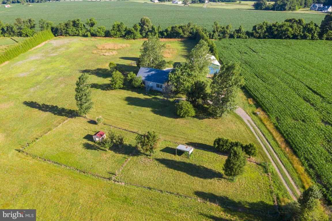 Rare opportunity to own over 12 acres of peaceful, private farmland in Centreville! You won't believ