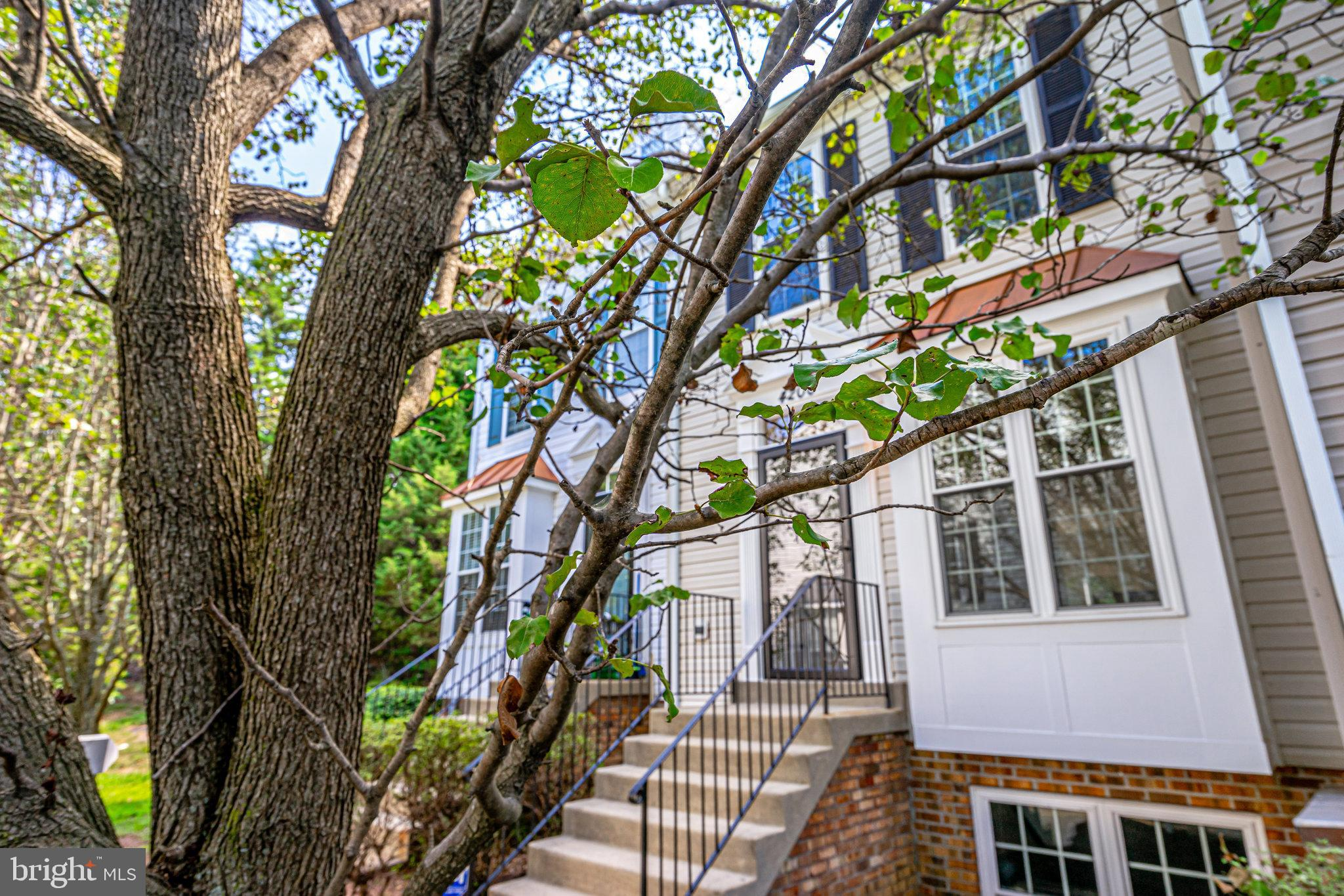 Gorgeous Interior Townhome in the Community of Montclair Mews. Fresh Paint throughout & New Carpet.