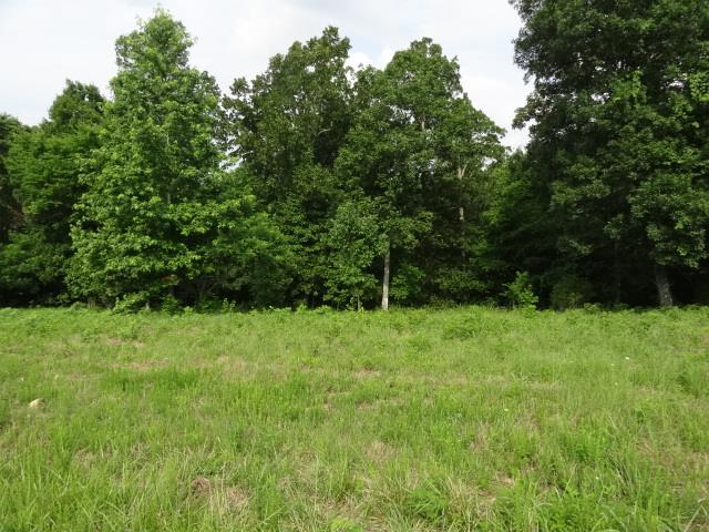 NICE BUILDING LOTS IN BACKWOOD ESTATES, ENJOY THE PRIVACY OF LIVING IN THE COUNTRY.