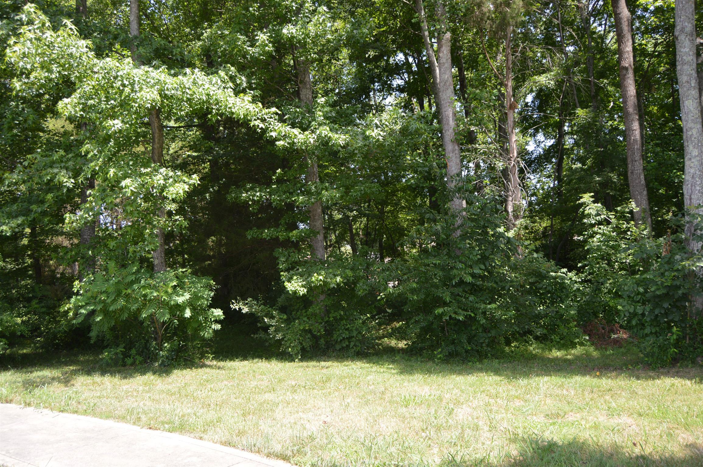 LAST WOODED LOT IN DANFORD/ONE OF CLARKSVILLES PREMIER DEVELOPMENTS/LARGEST LOT IN DANFORD/NO CITY TAXES/PRIVATE PARK FOR RESIDENTS/UNDERGROUND UTILITIES/$40 HOA PER MONTH/SOME OWNER FINANCING POSSIBLE/RESTRICTIONS AT OFFICE
