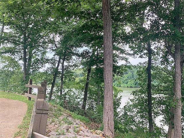 Beautiful condo with amazing views of Lake Barkley. Master suite is on the upper level with a HUGE closet/dressing room/laundry room & storage space. The screened in deck is perfect for entertaining or just relaxing and taking in the scenery.