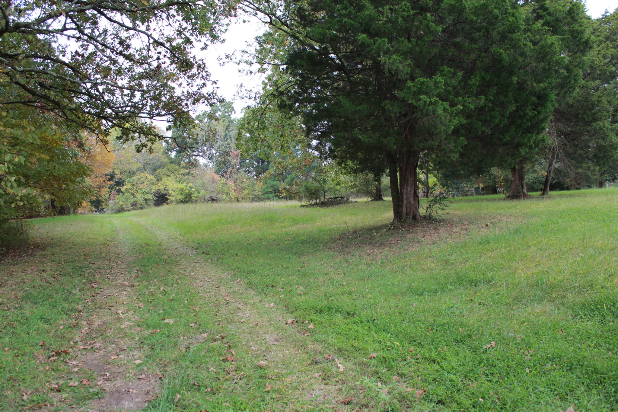 Beautiful 1.6 acre building site, 437 Foot of road frontage, electric & water at the road, 2 septic tanks on property. Do not enter the old farm house it has been vacant for 20 years, there is also an old well on the property that is also roped off, use caution when walking property.