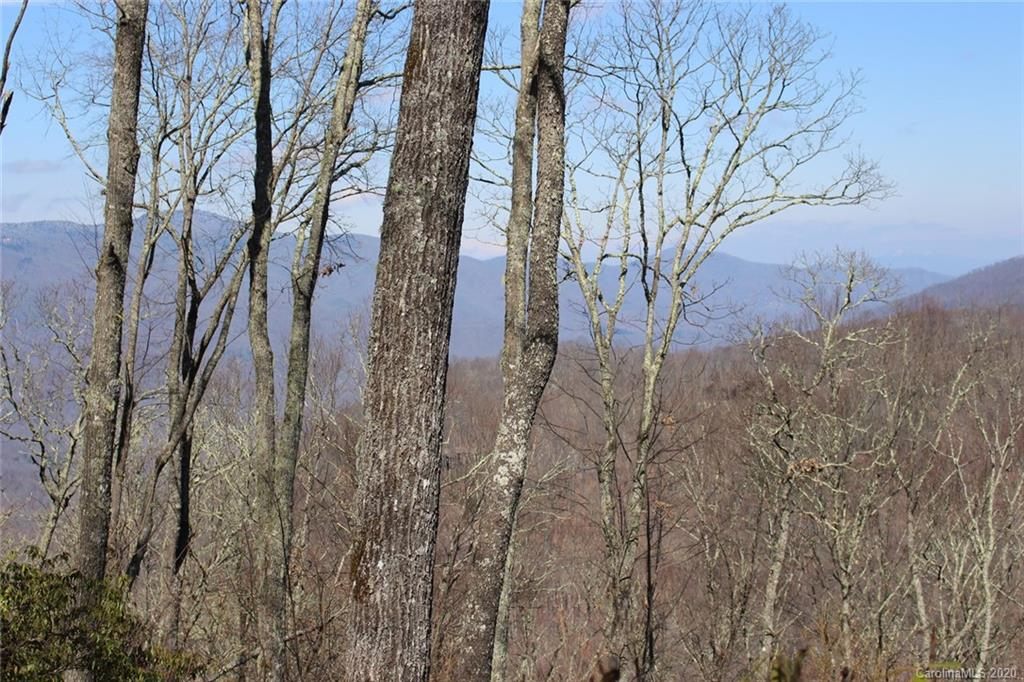 Build your dream home at this prized high-elevation lot at Balsam Mountain Preserve! Sitting at 4,650 ft., this private homestead features a great build site with long range mountain views facing North, East and Southeast. This is one of the last remaining high-elevation (above 4,500 ft.) homesteads available in the community. Balsam Mountain Preserve is a private 4,400 acre club community with 3,400 acres of conservation land and completed amenities featuring golf, equestrian, scenic trails, tennis, swimming and dining.