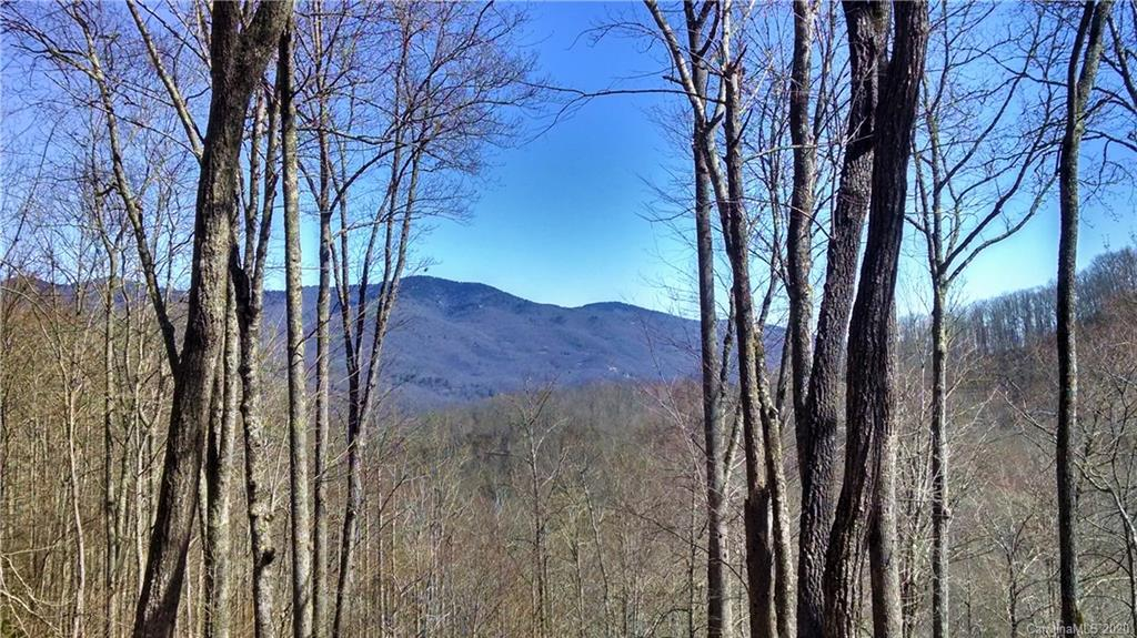 This secluded lot features a flat buildsite with great mountain views to the north of the Plott Balsam Mountain Range, and mountain views to the east of Doubletop Mountain.  This homesite has great water sounds from nearby Sugarloaf Creek and is surrounded by conservation easement.  A short hike away from the fitness center, this lot is a must see!