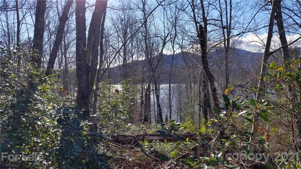 Welcome to Lake Lure! It's Springtime & time to Enjoy being in the NC Mountains. Lake & Mountain Seasonal Views through Fall & Winter month's. Partial Summer Views. This Property is a rare find with No Association Dues! 2 Lots being Sold together totaling 1.8 Acres. Parcel #'s 1646876 (1.37 Acre Lot) & 1611019 (.43 Acre Lot).  This Property sits above Lakefront Homes off of Buffalo Shoals Rd. Paved Road Access to Lots off Thomas & Allen Drives.  Only a few Minutes to the Rumbling Bald Resort & 2 Golf Courses. Only 7 Miles (17 Minutes) to Lake Lure Beach & Water Park Area. Another 1 Mile (21 Minutes) to the Chimney Rock State Park Main Entrance. A convenient 4 Miles (11 Minutes) to the Lake Lure ~ Ingles Grocery Store. No Well, Septic or Cit