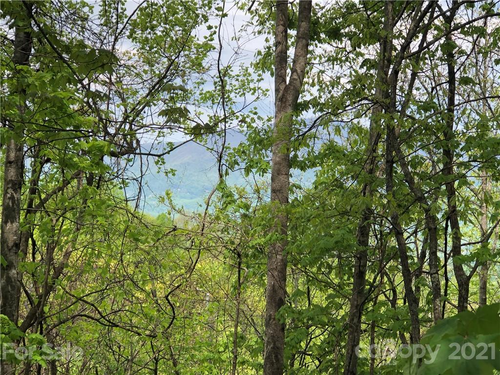 Beautiful, private lot in Balsam Mountain Preserve!  Enjoy wonderful mountain views of the Plott Balsam Mountain Range from the northeast to the northwest.  The long, private drive was recently improved and is lined with wildflowers that lead to a gentle sloping buildsite.  Build your mountain dream home on this homestead with great views and just five minutes from the amenities! This lot is a must-see!