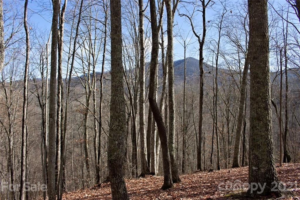 Beautiful lot on quiet street in Balsam Mountain Preserve!  Remote, yet close to the amenities, this homestead provides fantastic views of Doubletop Mountain to the east and views of the Plott Balsam Mountain Range to the North.  Build your mountain dream home on this gentle buildsite.  Private drive (Parbuckle Way) recently improved.  This lot is a must see!