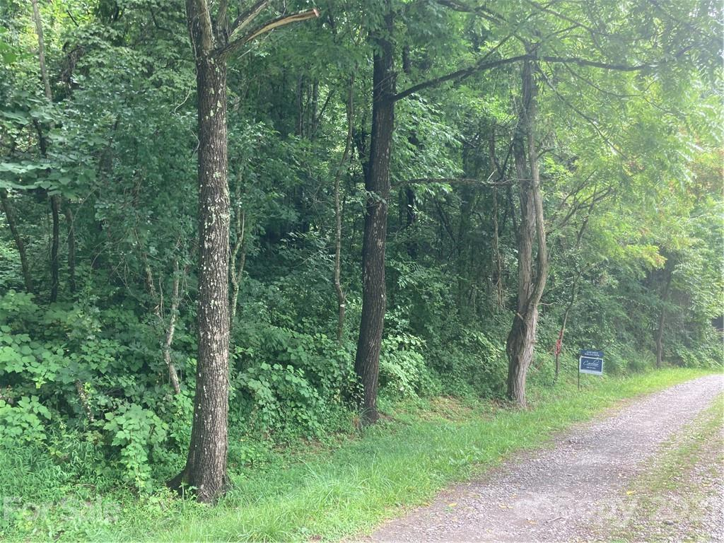 2 beautiful acres of forest land with great access. Easy build with gentle topography. Approximately 4 miles from Hwy 25 and 10 minutes to Weaverville, 15 to Asheville. Private but not remote. Extensive road frontage for easy access to different areas of tract.  New 3 Bedroom septic permit on file.