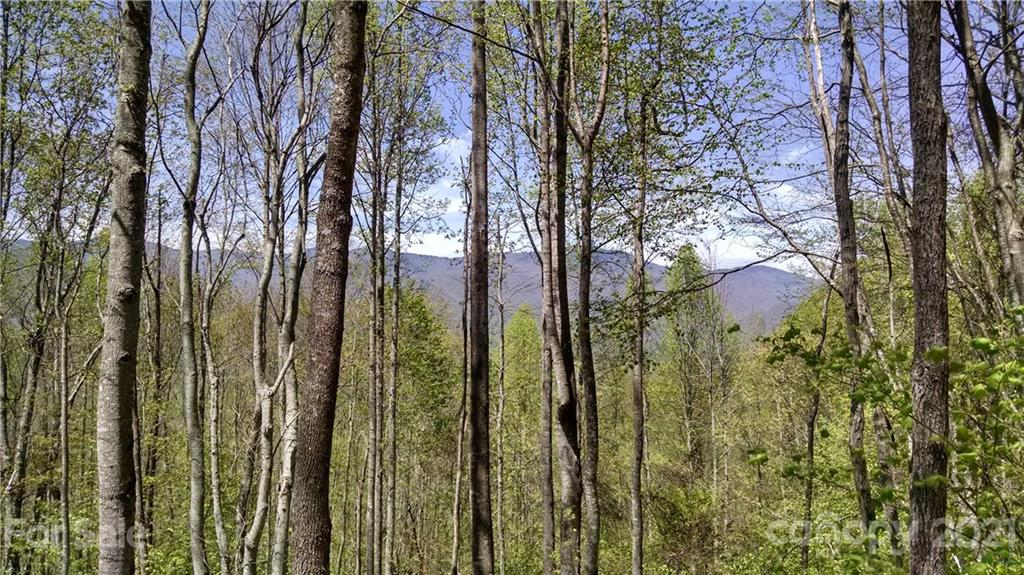 One of the flattest homesites in Balsam Mountain Preserve!  This 2.51 acre lot features gorgeous, close-range mountain views to the north of the Plott Balsam Mountain Range, and layered mountain views to the west of the Great Smoky Mountains National Park.  The private drive to Lot 136 has recently been improved and the Seller is in the process of vista pruning to enhance view corridors.  Build your mountain dream home on this flat buildsite, with big views!