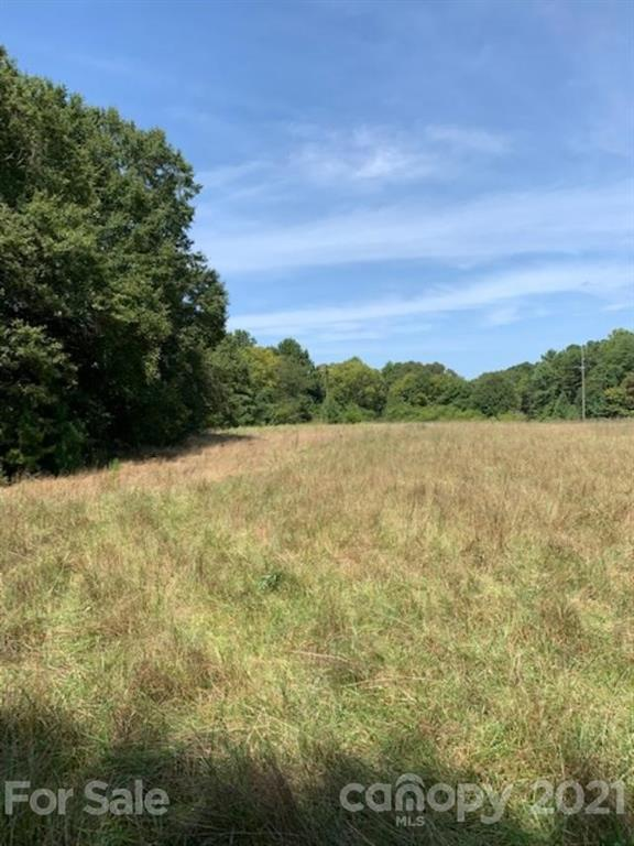 24 deeded acres on Old Highway 321  Filbert.  Lots of Road frontage close to 1000 feet. Zoning is RUD. 22.78 net acres. Make a Horse farm , Build your dream home or divide it up.  We have a new survey of the property.