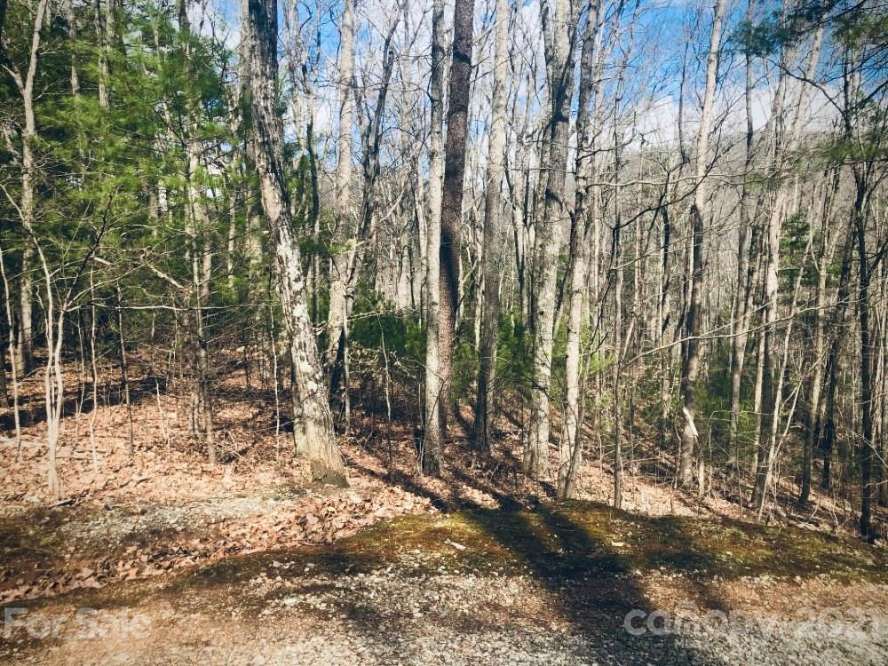 Come see this private wooded 4 acres tract MOL.  Located only 5 minutes from downtown Weaverville, where you find breweries, restaurants, grocery stores, galleries, the Wagbar, trails and more, or 15 minutes to Asheville.  This parcel has rolling to gently sloping land, is located in a quiet neighborhood, is easily accessible with gentle topography, and affords a easy build process. Beautiful winter views with privacy. Extensive road frontage for easy access to different areas of the tract.  Most ideal homesite is up the hill and on the right, by real estate sign. New 3 Bedroom septic permit on file. Restrictions: 1500 sq ft home built 30 feet from property line.
